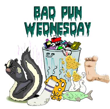 bad-pun-wednesday